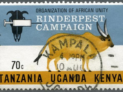 Postage stamp from the Rinderpest elimination campaign